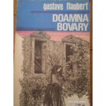 Doamna Bovary ( Moravuri de provincie )