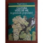 Cultura viței de vie în grădinile populației