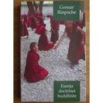 Esența doctrinei buddhiste. Calea spre trezie