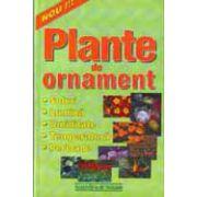 Plante de ornament