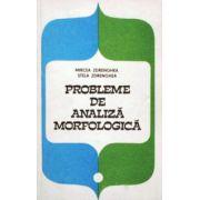 Probleme de analiza morfologica