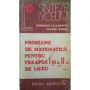 Probele de matematică pentru treapta I și a II-a de liceu ( 2 vol. )