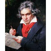 BEETHOVEN: Piano Concerto No. 5 'Emperor' & Piano Concerto No. 4 (CD)