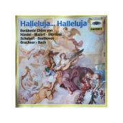 Halleluja... Halleluja - Beruhmte Chore (CD)