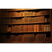 Mic dicționar de terapie naturistă