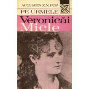 Pe urmele Veronicăi Micle