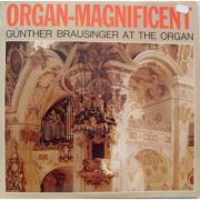 Organ-Magnificent: Gunther Brausinger at the organ ( vinil )