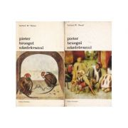 Pieter Bruegel năzdrăvanul ( 2 vol. )