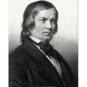 SCHUMANN / CHOPIN: Symphonische Etuden * Preludes op. 28 ( CD )