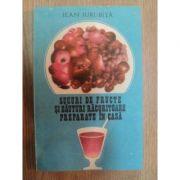 Sucuri de fructe şi băuturi răcoritoare preparate în casă