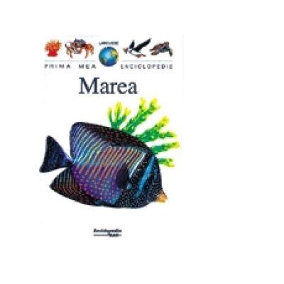 Marea ( Seria Prima mea enciclopedie Larousse )